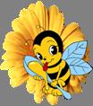 Logo Erbobio